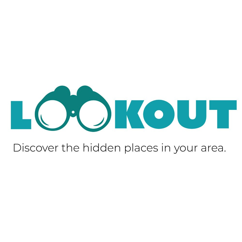 View the Lookout Demo Video